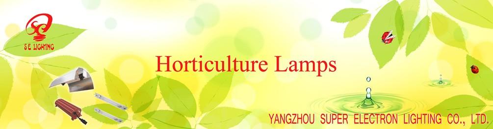 YANGZHOU SUPER ELECTRON LIGHTING CO., LTD.